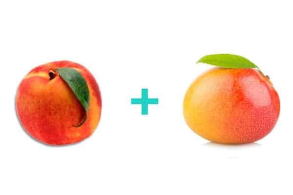 Peach and Mango baby food recipe