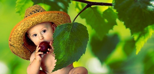 Baby with a cap holding red fruit