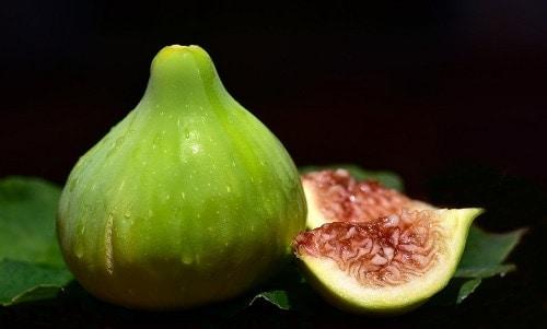 Fig fruit with black background