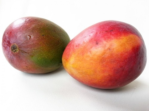two tropical mango