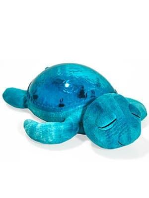 turtle sound machine