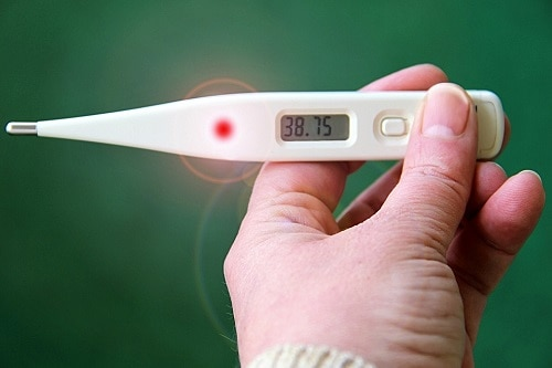 person holding thermometer