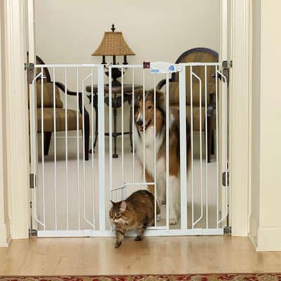 Carlson Extra Wide Baby Gate With Pet Door Extensions