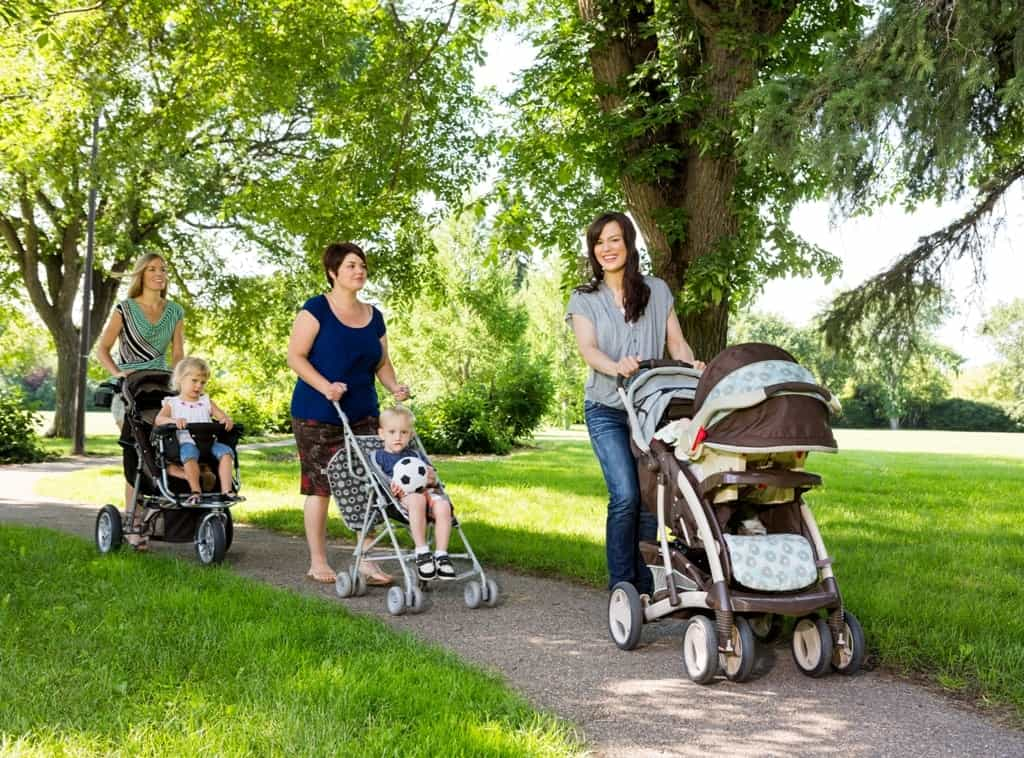 Mothers With Baby Strollers Walking In Park