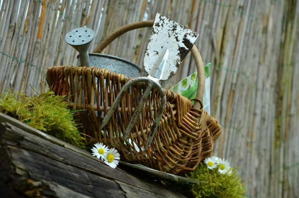 Coconut Oil as Garden Tools Cleaner