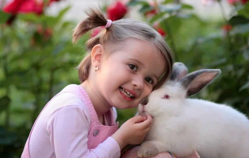 Little girl holding a rabbit
