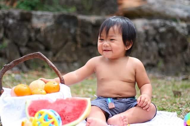 Baby Picnic