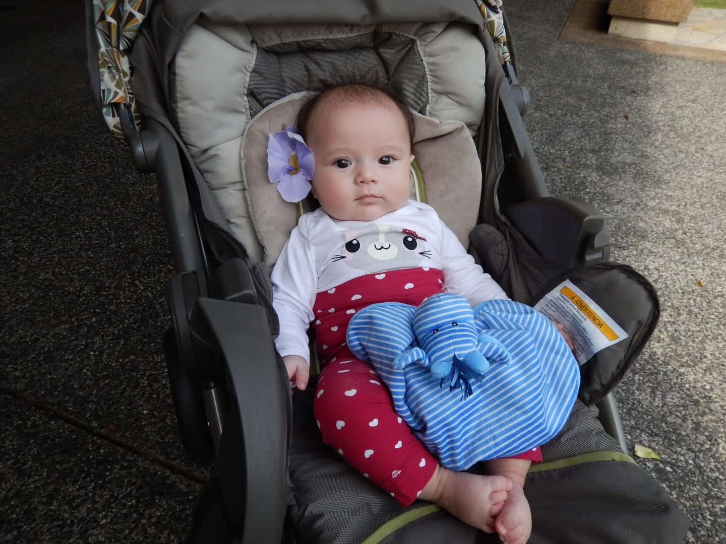A baby in one of the best rear facing car seat options on the market today.