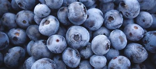 bunch on blueberries, upper shot