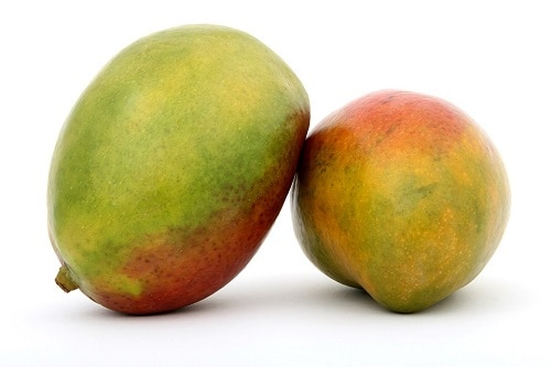 two half-ripe mango