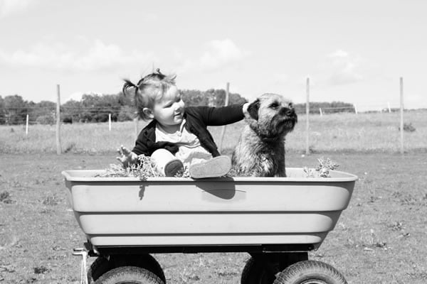 Girl Holding Puppy on Wagon