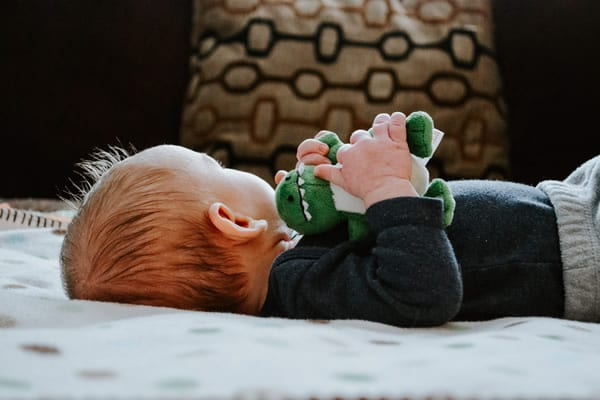 baby Holding Toy