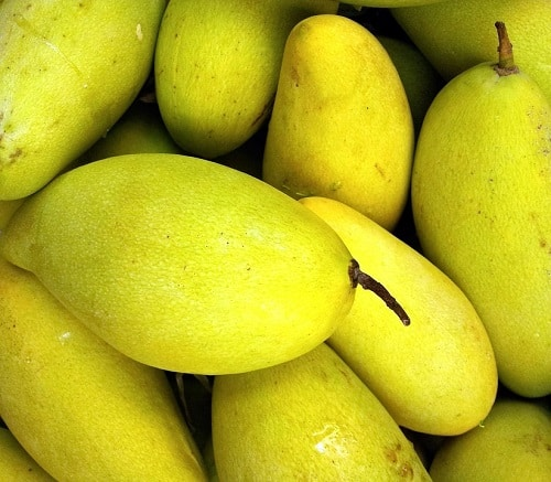 bunch of green mango