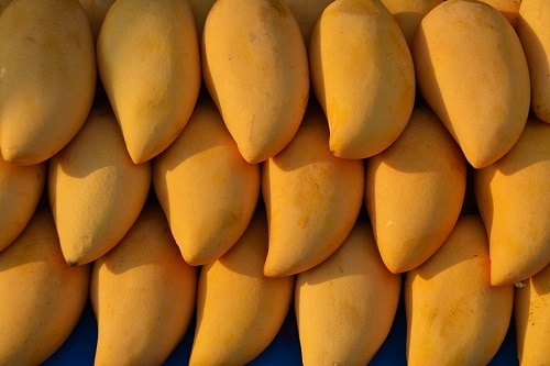 arranged ripe mango