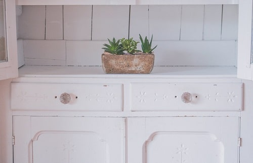 white cabinet with plant