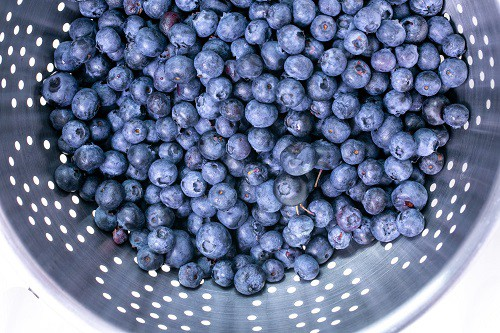 blueberries in stainless steel bowl